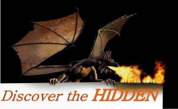 Discover the Hidden