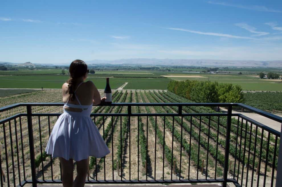 What to expect on the Sunnyslope wine trail outside of Boise, Idaho, in Caldwell, Idaho. This is Koenig Vineyards.