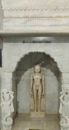 Chulgiri-Digambar-Jain-Parshwanath-Temple-Hill-Jaipur-Rajasthan-India-0026