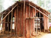 hastinapur_-_nishiyaji_20111021_1032985615