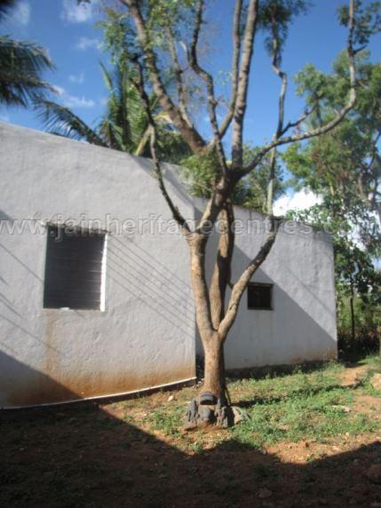 jain_ruins_of_kumarabeedu_mysore_district_karnataka_20131216_1794065015