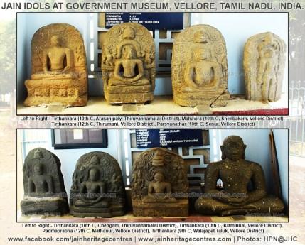 jain_idols_at_government_museum_in_vellore_of_tamil_nadu_20160416_1324011927
