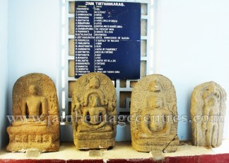 jain_idols_at_government_museum_in_vellore_of_tamil_nadu_20160416_1739545433