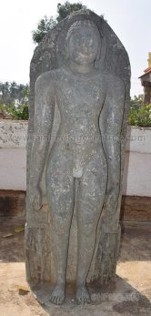 Idol of Lord Shanthinath in Kayotsarga. - Photo by HPN@JHC