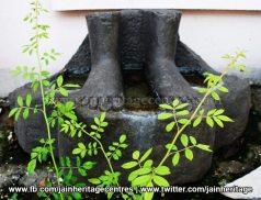 Ruined Tirthankar idol - Jain Museum