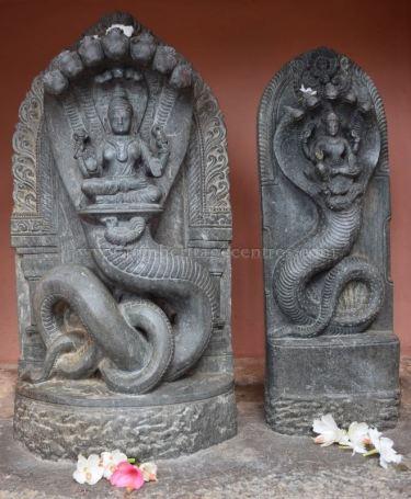 Karnataka_Tumkur_Kuchhangi_Parshwanath_Digambar_Jain_Temple_0010