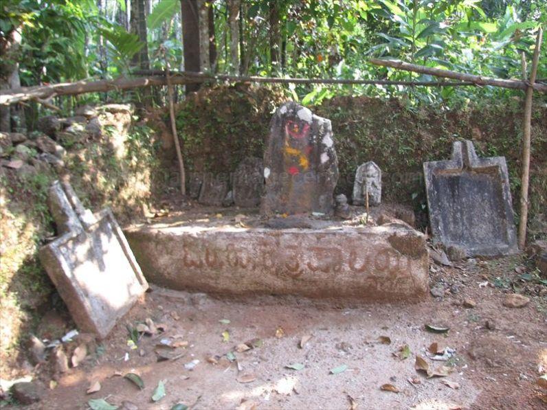 sri_vardhamana_swami_digambar_jain_temple_bidarur_20121021_1050240225