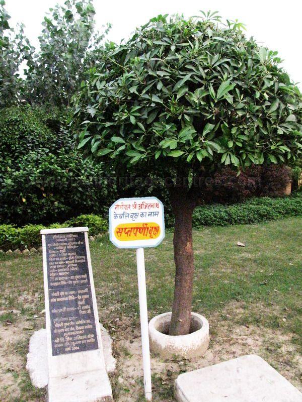 shri_parshwanath_digambar_jain_temple_-_vahalna_20120419_1690929559