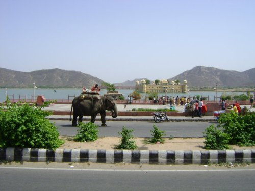 CCD at Jal Mahal