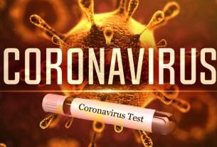 Coronavirus Found in Jaipur