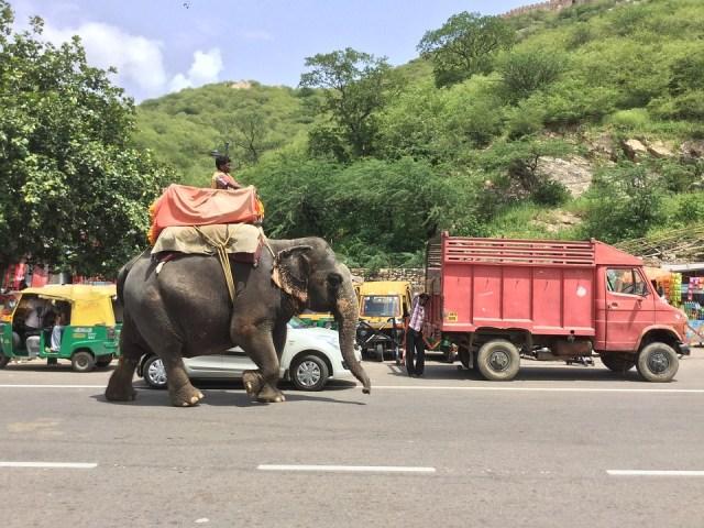 jaipur road