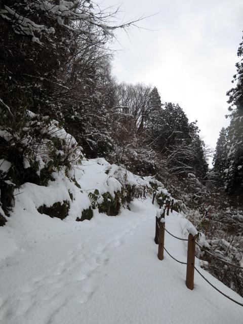 雪の中、御廟谷を歩く