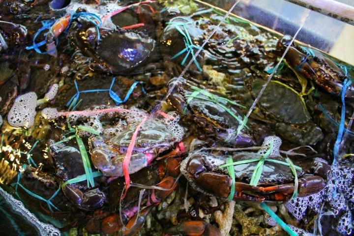 jajanbeken zomato bali fish market