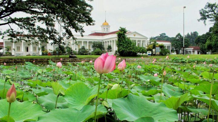 jajanbeken bogor botanical garden entrance