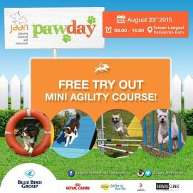 Who's getting excited!? We are There will be super cute things for your doggie to enjoy while visiting our Paw Day and an agility course is just 1 of them! So come on and get your early bird tickets now. WOOF! #jakartaanimalaidnetwork #pawday2015 #animalwelfare