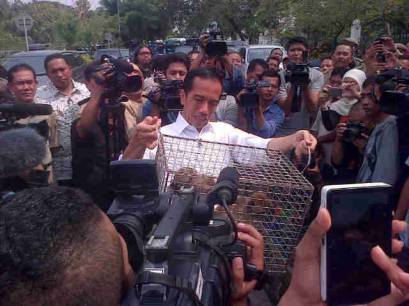 President Jokowi assisting the confiscation of 'Dancing Monkeys'