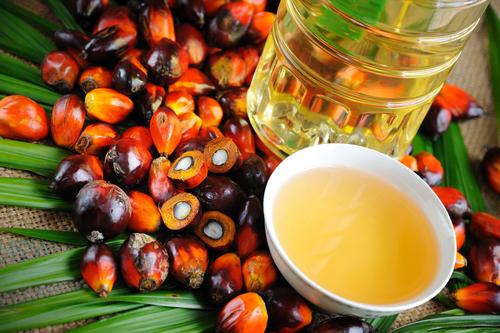 palm-oil