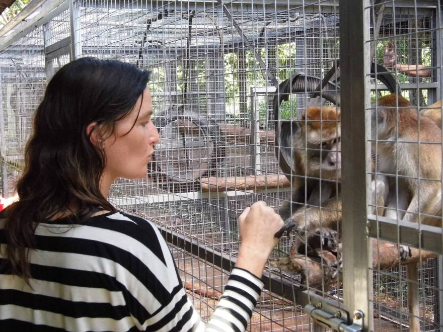 One of JAANs founders, Femke Den Haas, having a moment with one of the Monkeys.