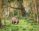 ウジュンクロン、世界遺産、国立公園
