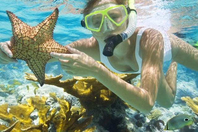 snorkeling-bagi-yang-tidak-bisa-berenang-snorkeling-dasar