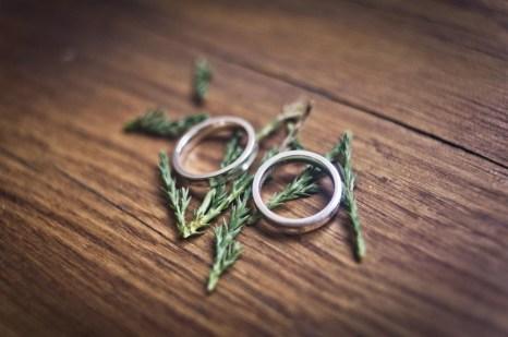 Elmore Court wedding photography-160
