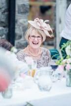 Plas Dinam Wedding Photography-177