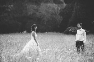 Plas Dinam Wedding Photography-229