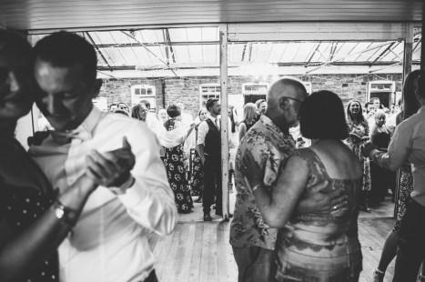 Plas Dinam Wedding Photography-287