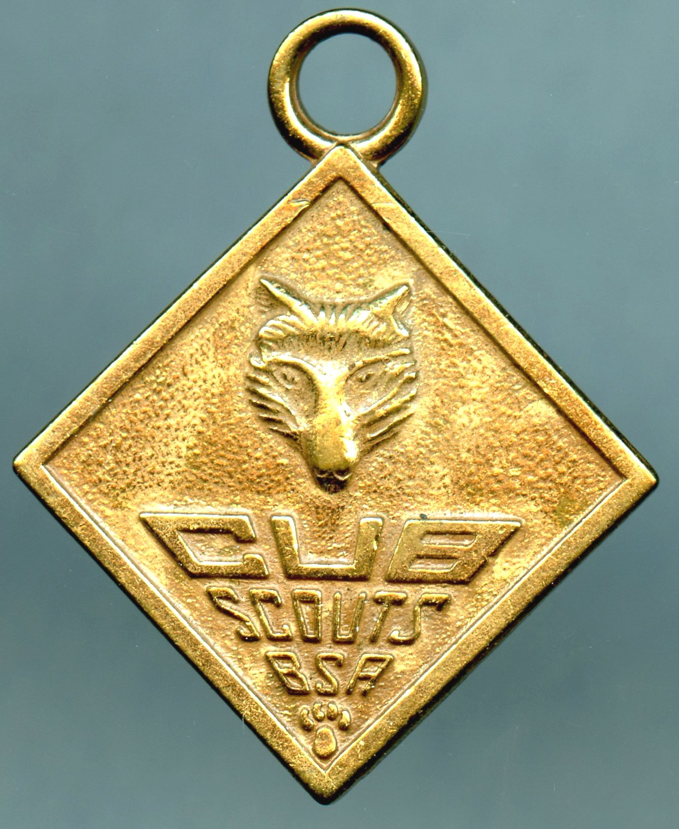 Cub Scouts Fob With Logo And Oath
