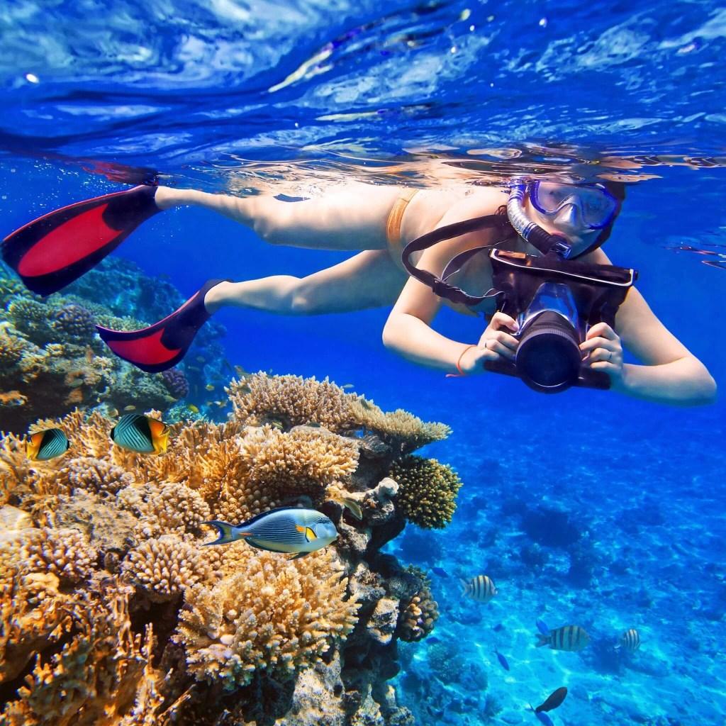 Ocho Rios Snorkeling-_Jamaica-Ocean-View-Villa-Ocho-Rios