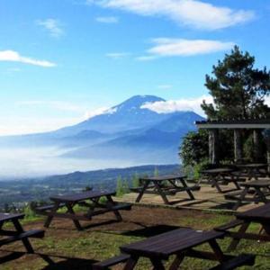Tempat Wisata Seru di Semarang yang Wajib Dikunjungi