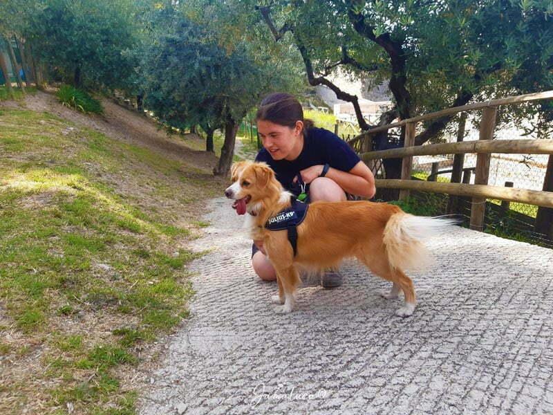 Assisi con il cane - Dog sitter Giada e Francesca