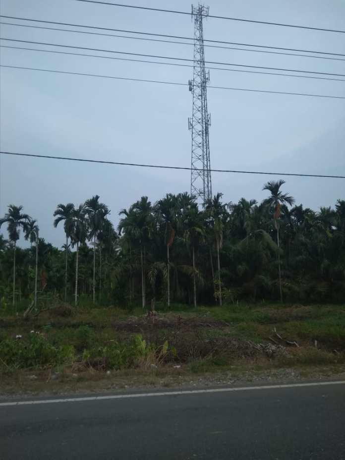 Salah satu tower telekomunikasi yang ada di Kabupaten Tanjung Jabung Barat. Foto: Tra/Jambiseru.com