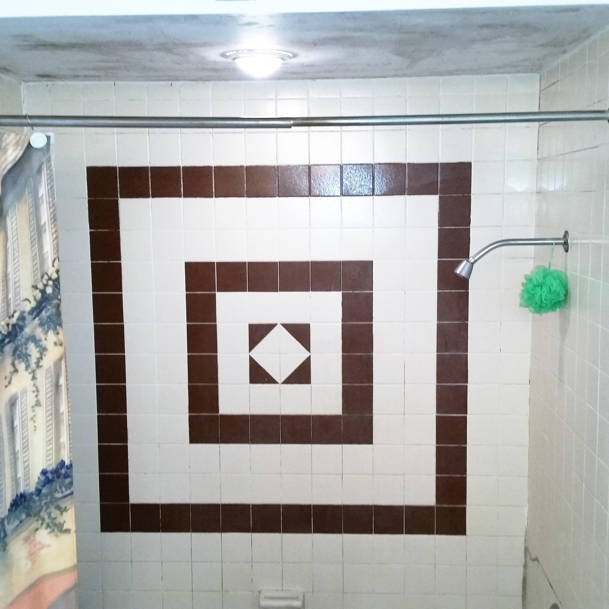 Master Bath Before 2