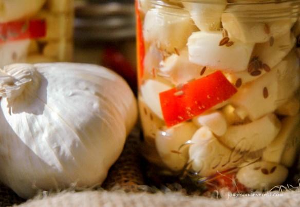 garlic_11