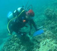 Conservation on Fiji's Reefs