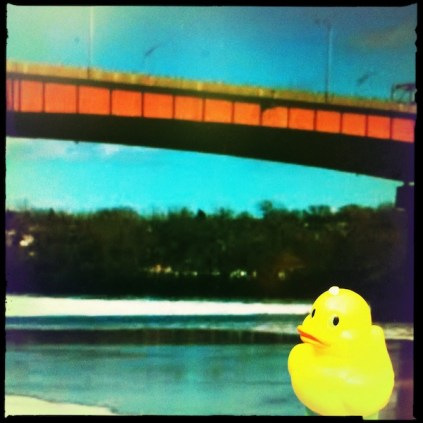 Aren't You Cold, Ducky