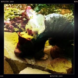Yoga-ing Yard Gnome 1