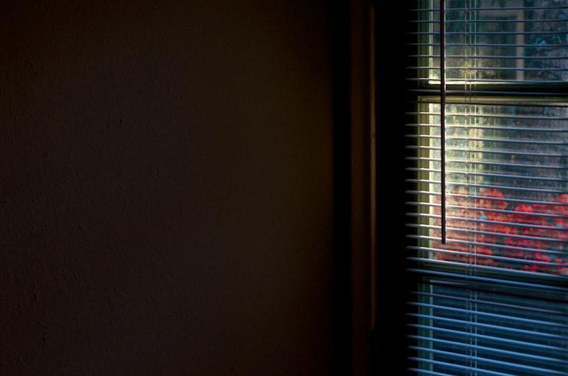365.30 Afternoon (De)Light #2