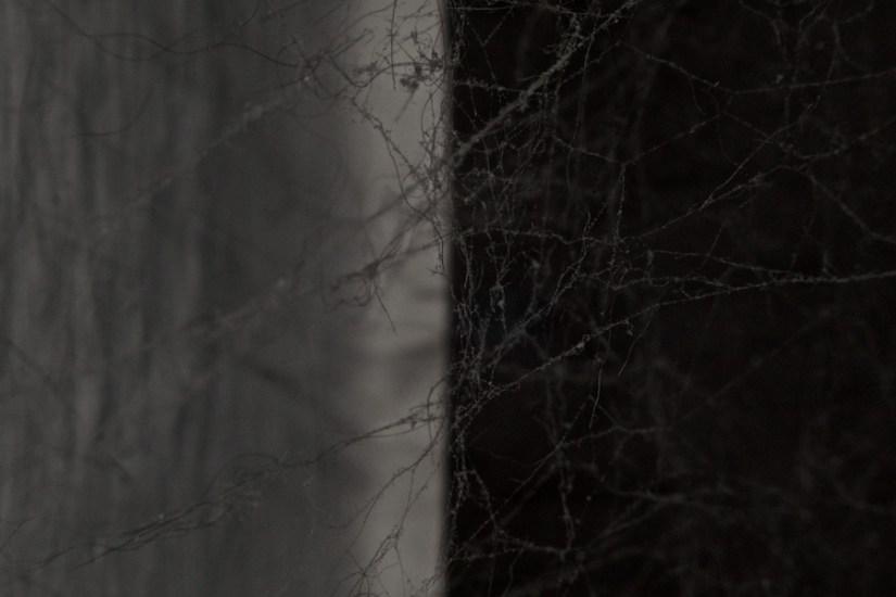 365 272 ohne titel 20120925©JamesECockroft