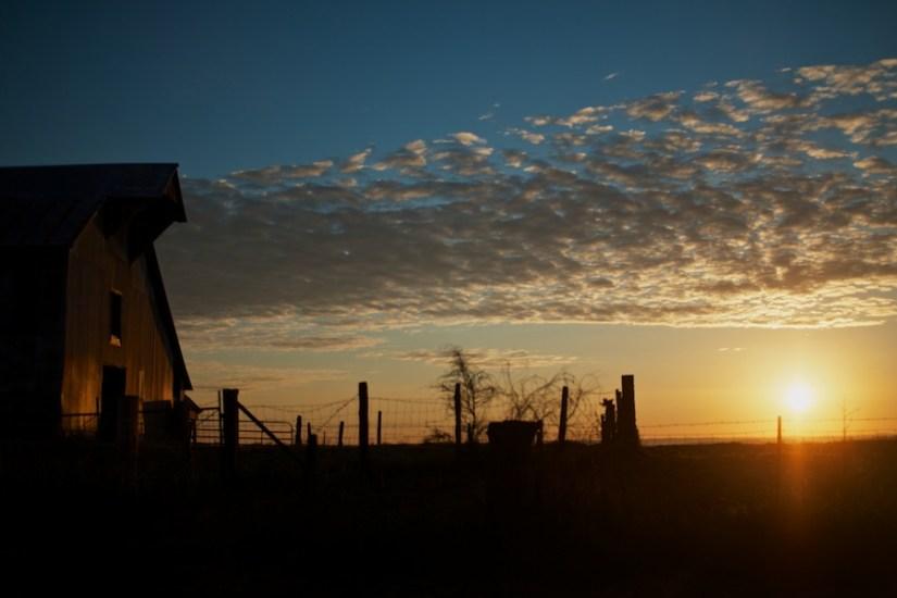 365 306a Golden Hour on the Arkansas Farm 20121029©JamesECockroft