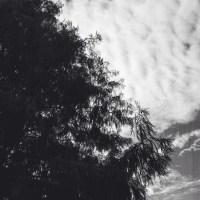 7 52 4516©JamesECockroft 20131106