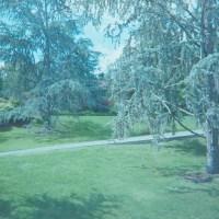 2014 Arboretum Lake Carolyn Random27©JamesECockroft 20141224