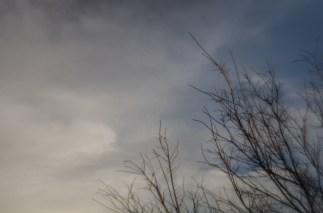 Zomb-E Sky|7|©JamesECockroft-20140122