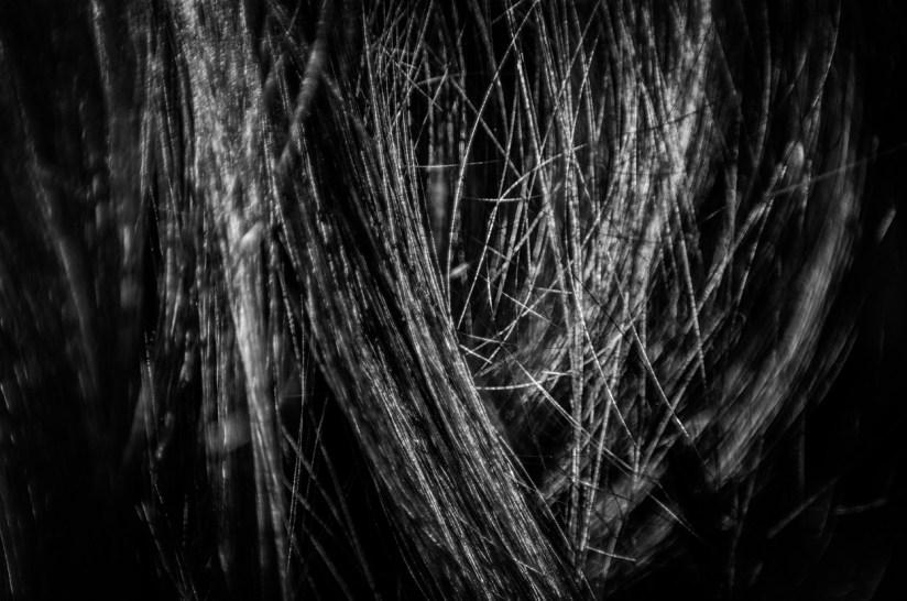 Hair Studies 27©JamesECockroft 20140803