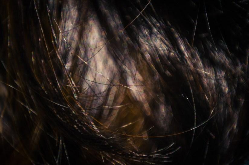 Hair Studies 29©JamesECockroft 20140803