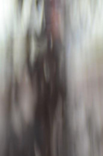 Blurred Lines|7|©JamesECockroft-20141114