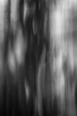 Blurred Lines|8|©JamesECockroft-20141114