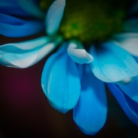 Unnatural46©JamesECockroft 20140130