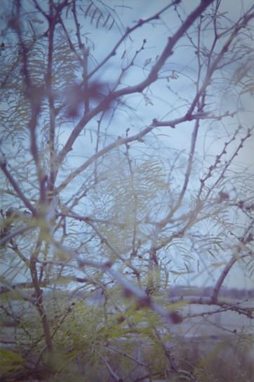 Espio 35-70_Lomo Color 100|4|©JamesECockroft-20141221